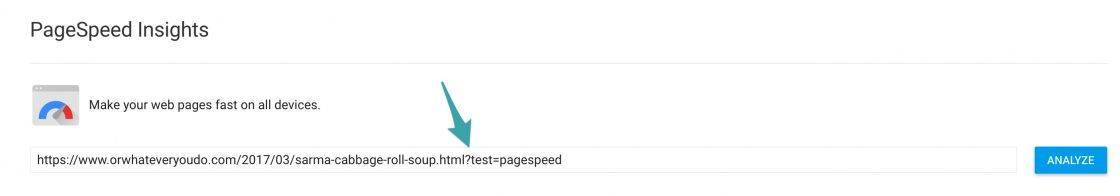 ?test=pagespeed
