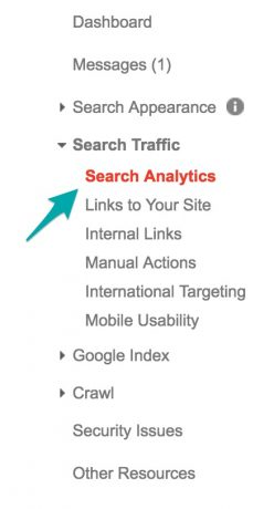 Click on Search Analytics under Search Traffic
