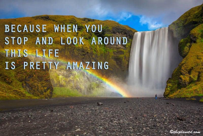 Because when you stop and look around this life is pretty amazing.