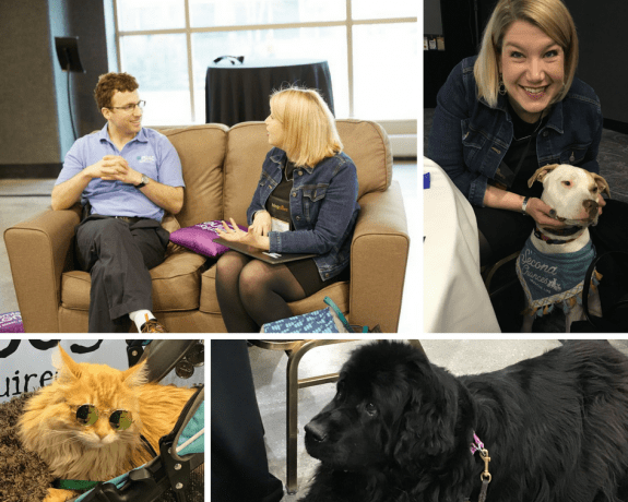 A collage of Jenny Guy meeting with various BlogPaws attendees, both human and of the furry friend variety.
