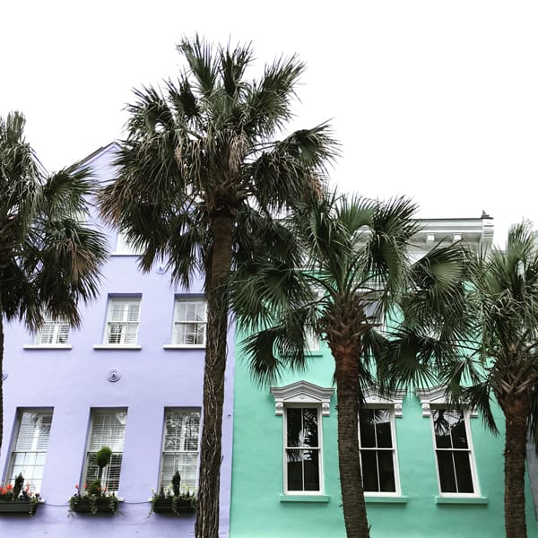 Pastel painted houses in lavendar and mint green, located in Charleston, South Carolina, with palm trees out front.