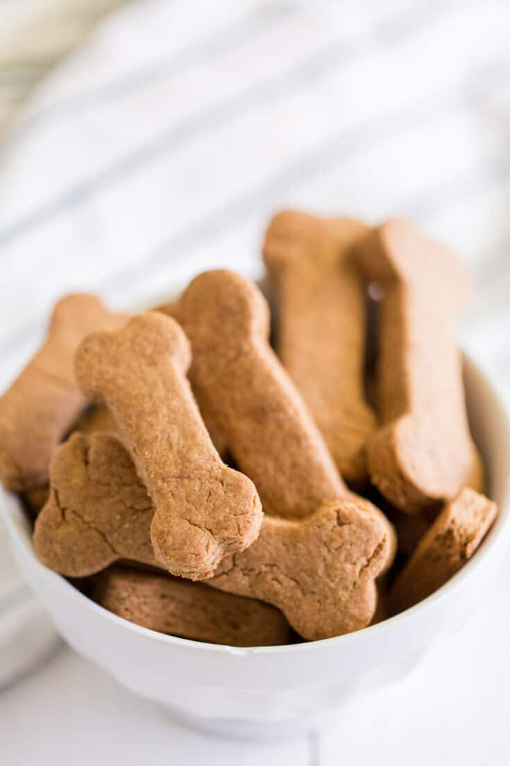 Homemade dog treats from Spaceships and Laserbeams
