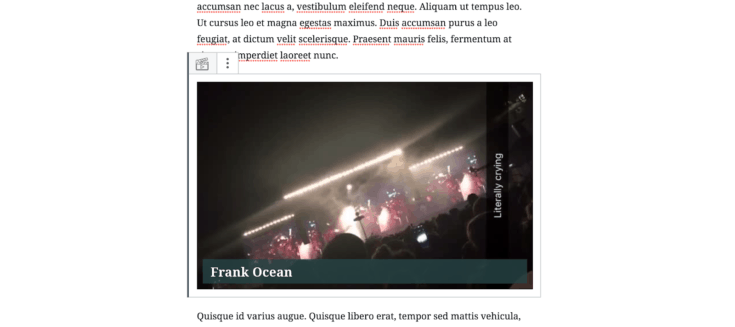 Screen capture displaying a video adhesion between two paragraphs.