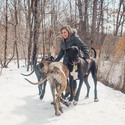 karla playing with great danes in the snow