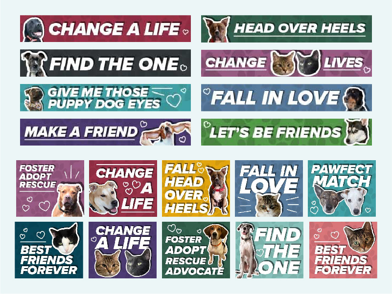 some of the pet psa options
