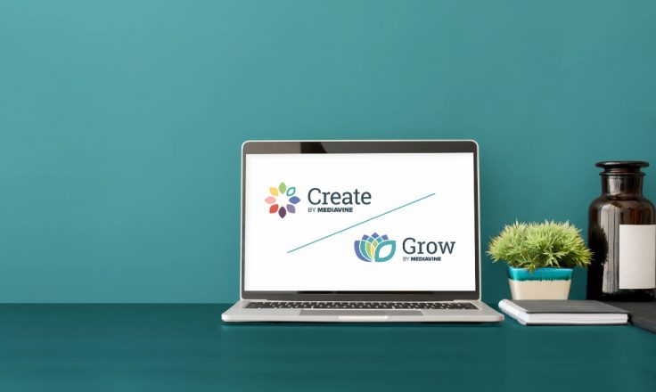 Create and Grow logos shown on a laptop on a teal wall and desk
