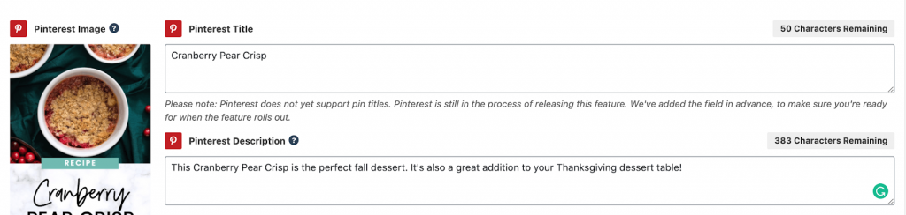 screenshot of description section on pinterest