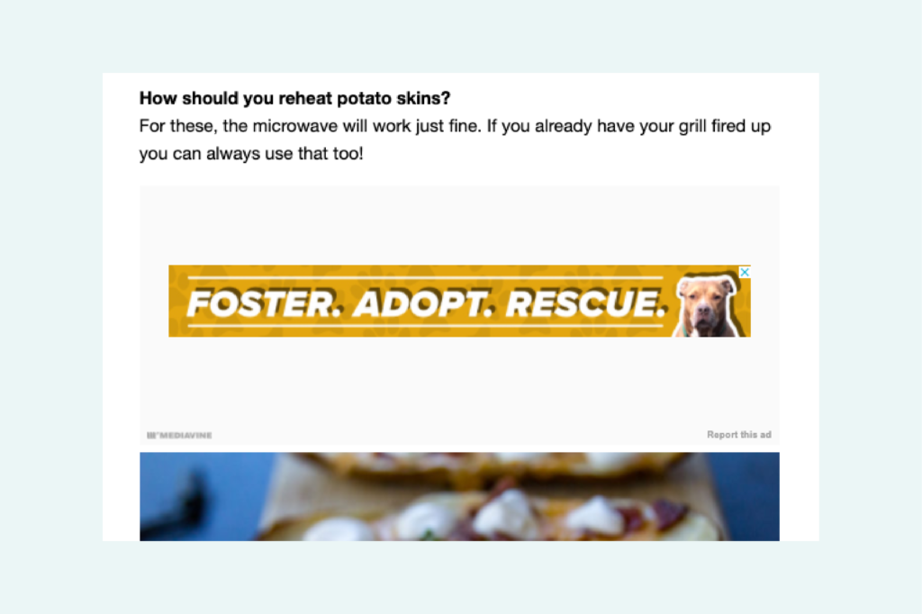 screenshot of adopt don't shop psa within the ad box