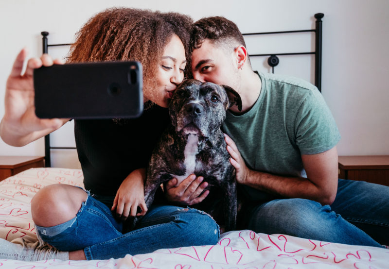 two people taking a selfie with a pit bull on a bed